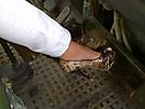 Schuhe im MAN-Truck